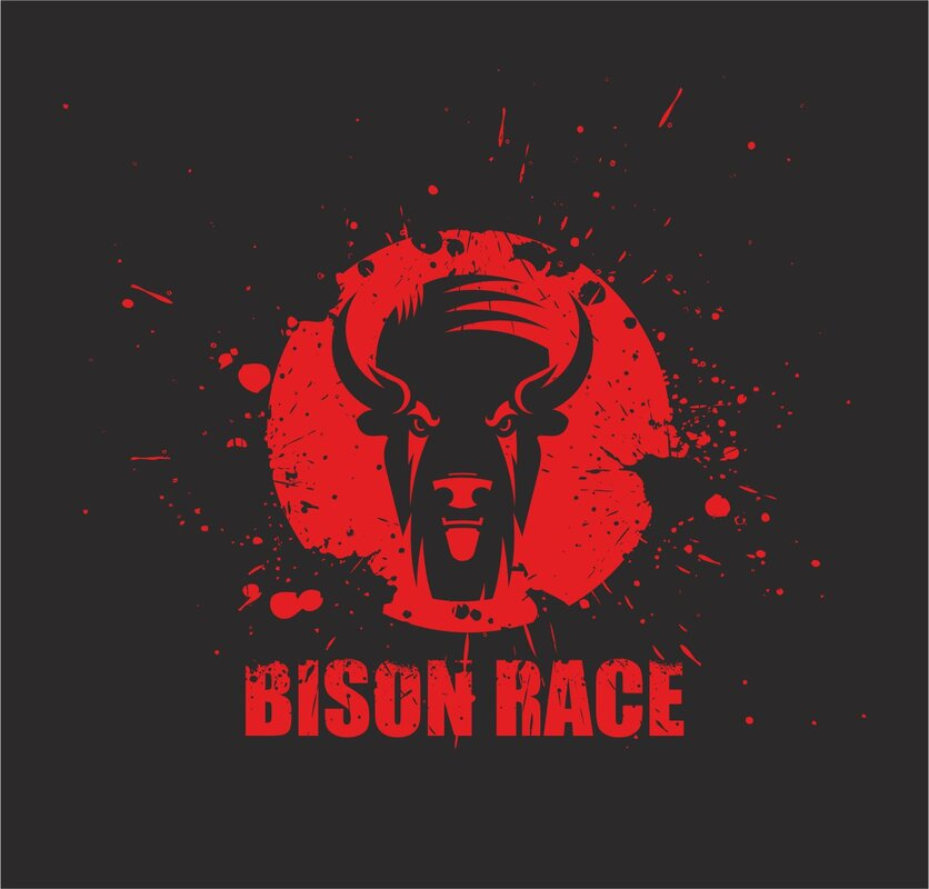 BISON RACE 2020.jpg