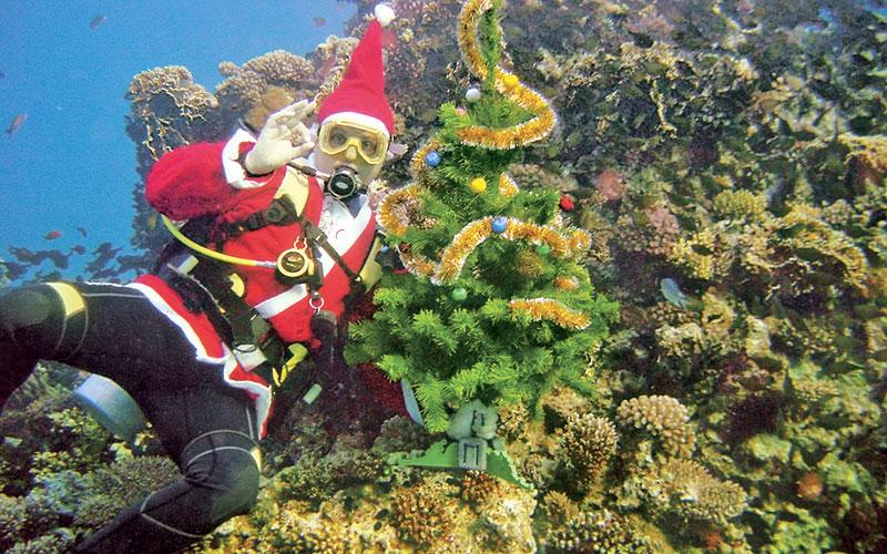 новый год под водой.jpg
